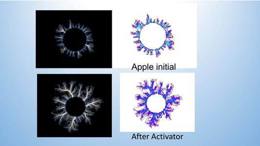 Increased Glow on an Apple