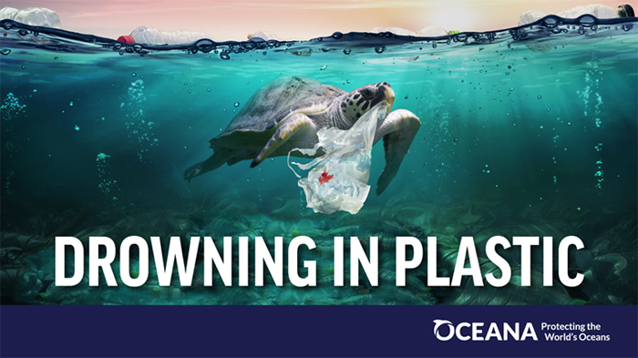 Drowning in Plastic, Oceana poster